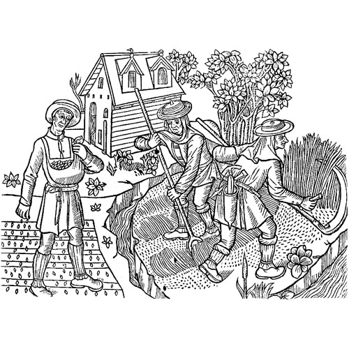 illustration of 15th century farmers working